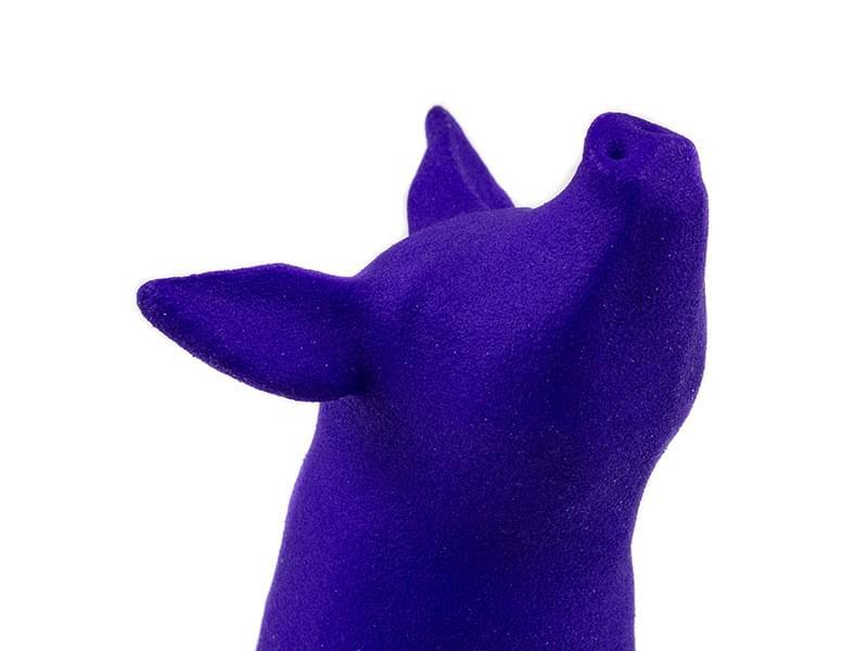 Polyamide Dyeing Purple